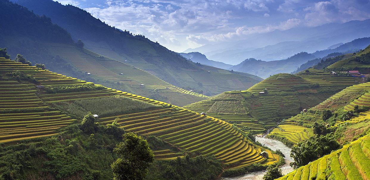 Naples Global Advisors view of Vietnam